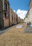 Rue de La Laguna avec des tapis de fleur Image libre de droits