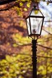 rue de lampe Images libres de droits