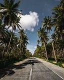 Rue de Palmtree sur les Philippines image libre de droits