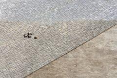 Rue de trottoir de bâtiment Vue de ci-avant Photo libre de droits