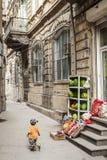 Rue de ville de ville de Bakou vieille en Azerbaïdjan Photographie stock libre de droits