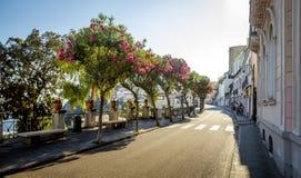Rue de ville de Capri sur l'île de Capri en Italie Image libre de droits