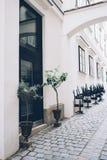 Rue de ville, murs blancs et architecture, arbres dans des pots de fleurs Images stock