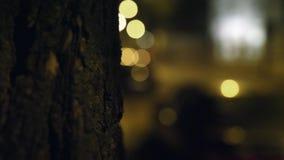 Rue de ville de nuit avec l'effet de bokeh banque de vidéos