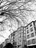 Rue fraîche Image stock
