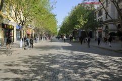 Rue Harbin Chine de Zhongyang photographie stock libre de droits