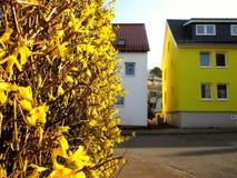 Rue jaune Photo stock