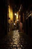 Rue la nuit dans Rovinj images libres de droits