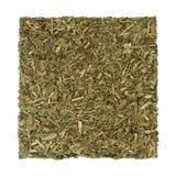 Rue Leaf Herb Stock Image