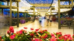 Rue piétonnière décorée des lits de fleur et du bel éclairage Timelapse banque de vidéos