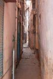 Rue rose Photographie stock libre de droits