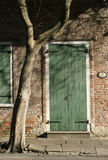 Rue Royale Door. Green wooden door with tree and shadow Stock Image