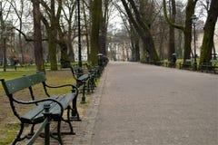 rue vide en parc Photographie stock libre de droits