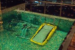 Rueda de ardilla debajo del agua en la piscina Fotos de archivo libres de regalías