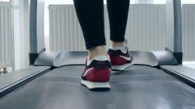 Rueda de ardilla, pies del hombre en zapatos de los deportes en el simulador en gimnasio almacen de metraje de vídeo
