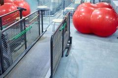 Rueda de ardilla vacía en sitio de la aptitud, fitball rojo y espejo Rueda de ardilla grande para los perros, concepto de la apti imágenes de archivo libres de regalías