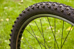 Rueda de bicicleta Fotografía de archivo