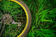 Rueda de bicicleta en hierba verde Fotografía de archivo libre de regalías