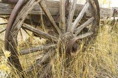 Rueda de carro vieja Imagen de archivo libre de regalías