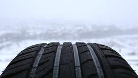 Rueda de coche en el fondo del bosque del invierno Foto de archivo libre de regalías