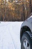 Rueda de coche, viaje al bosque del invierno Imagenes de archivo