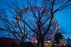 Rueda gigante de Viena iluminada Fotos de archivo libres de regalías