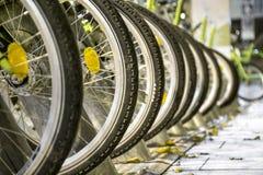 Ruedas de bicicleta Foto de archivo