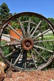 Ruedas de carro de madera viejas en un carro que sostiene las macetas Imagen de archivo libre de regalías