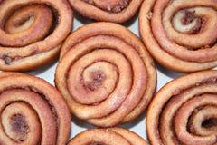 Ruedas deliciosas de la pacana Imagen de archivo libre de regalías