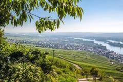 Ruedesheim dans le Rheingau Photos libres de droits