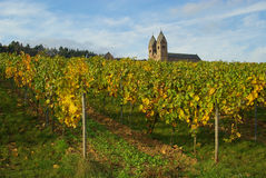 Ruedesheim Eibingen Abtei Lizenzfreie Stockfotos