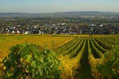 Ruedesheim Opactwo Eibingen 02 Fotografia Royalty Free
