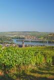 Ruedesheim am Rhein,Rhine Valley,Germany Stock Images
