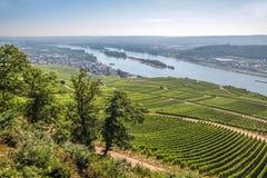 Ruedesheim in Rheingau Stock Afbeelding