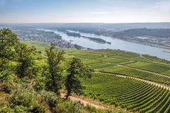 Ruedesheim in the Rheingau Stock Image