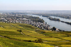 Ruedesheim and Rhine Stock Images