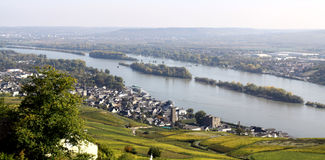 Ruedesheim and Rhine Stock Image