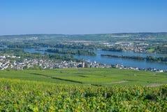 Ruedesheim Rhine River, Tyskland arkivfoton