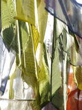 Ruegue las banderas imagen de archivo libre de regalías