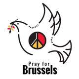 Ruegue para Bruselas La paloma y el símbolo de paz en Bélgica señalan color por medio de una bandera Foto de archivo