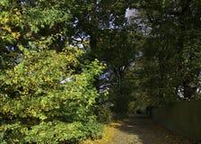 Ruelle anglaise de pays en automne Photos libres de droits