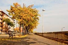 Ruelle d'automne Image libre de droits