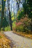 Ruelle d'automne Photos libres de droits