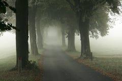 Ruelle dans le brouillard Photographie stock