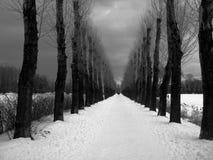 Ruelle de l'hiver Images stock