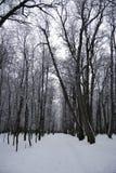 Ruelle de l'hiver image stock