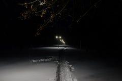 Ruelle de l'hiver dans le stationnement et des lanternes brillantes Tir de nuit photos libres de droits