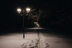 Ruelle de l'hiver dans le stationnement et des lanternes brillantes Tir de nuit photographie stock libre de droits
