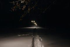 Ruelle de l'hiver dans le stationnement et des lanternes brillantes Tir de nuit images libres de droits
