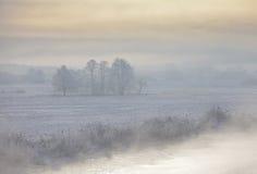 Ruelle de l'hiver la nuit Photographie stock libre de droits